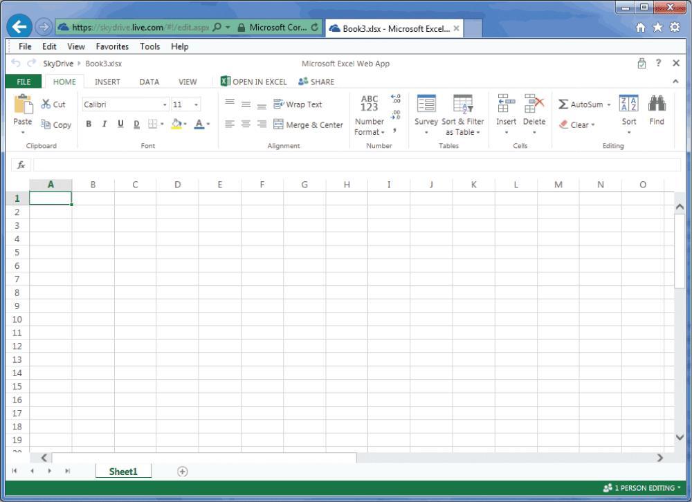 Figure 2. Microsoft Excel Web App